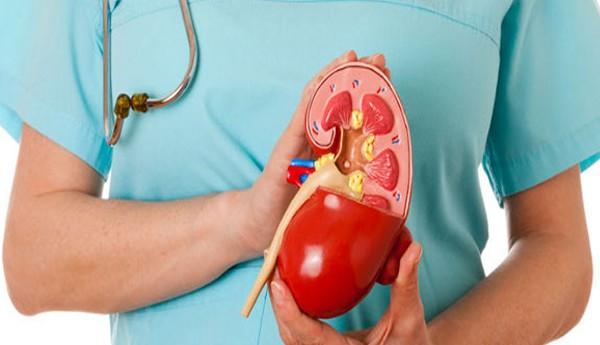 Лечение пиелонефрита антибиотиками