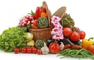 Нюансы организации системы продажи продуктов питания.