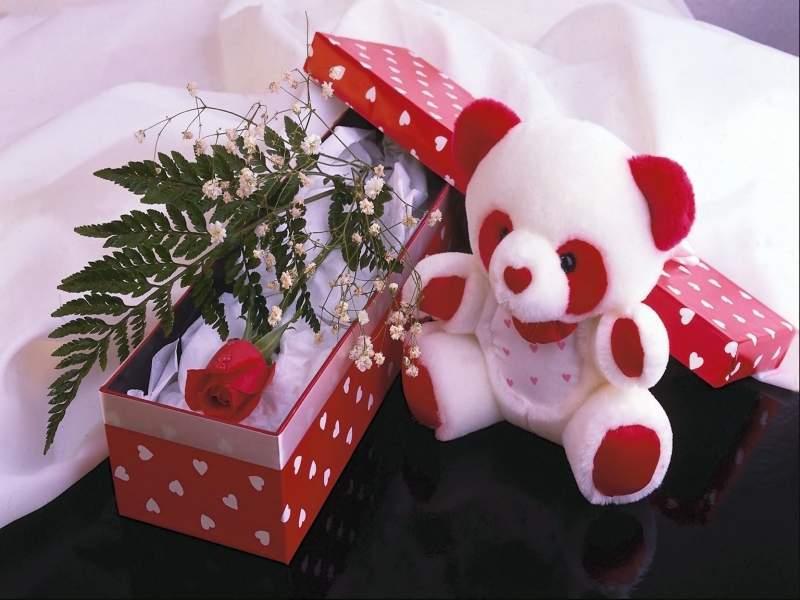 Самый красивый подарок любимой девушке