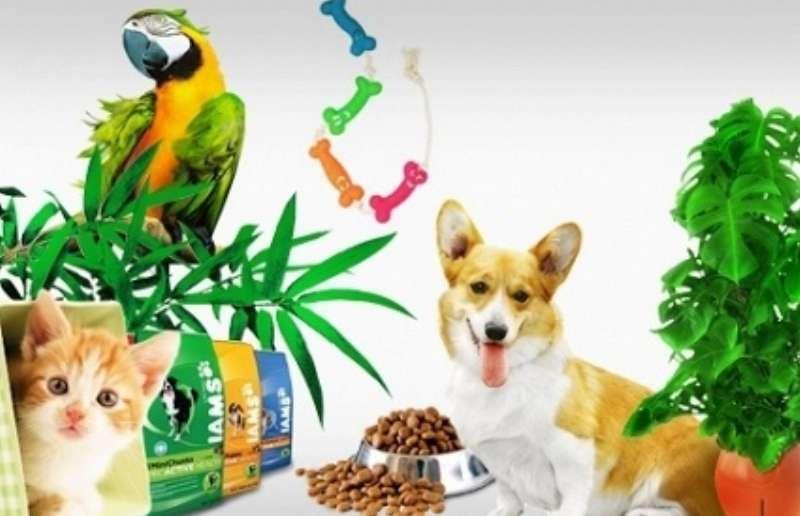 Различные товары для животных на вкус, цвет, рост и вес в зоомагазине Faunamarket
